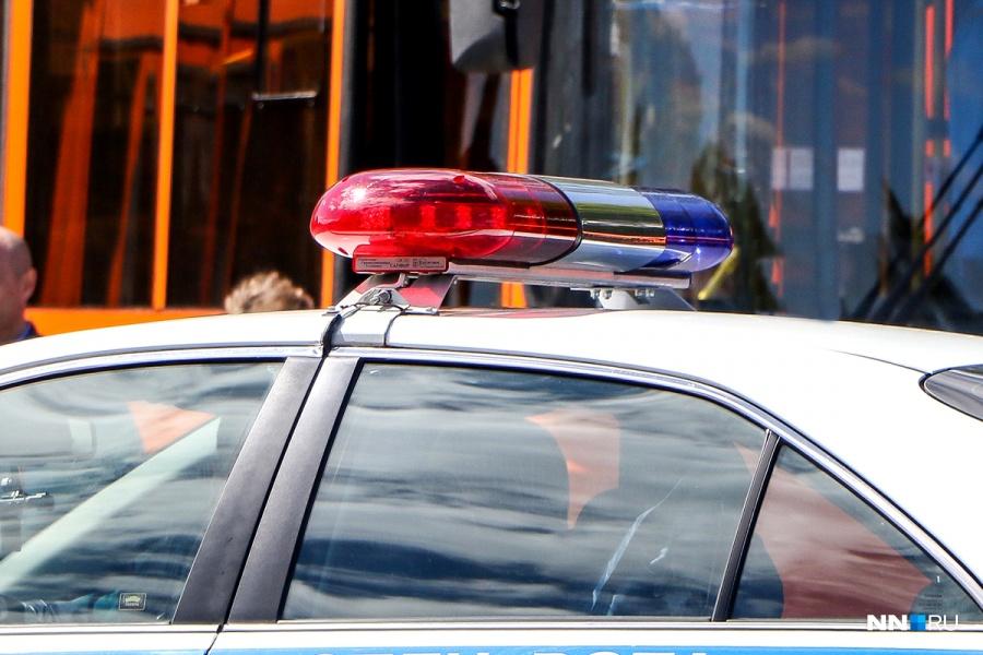 ВНижнем Новгороде полицейские вовремя погони убили водителя