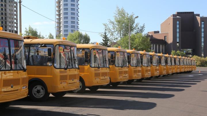 В районы края отправили два десятка новых школьных автобусов по американскому образцу