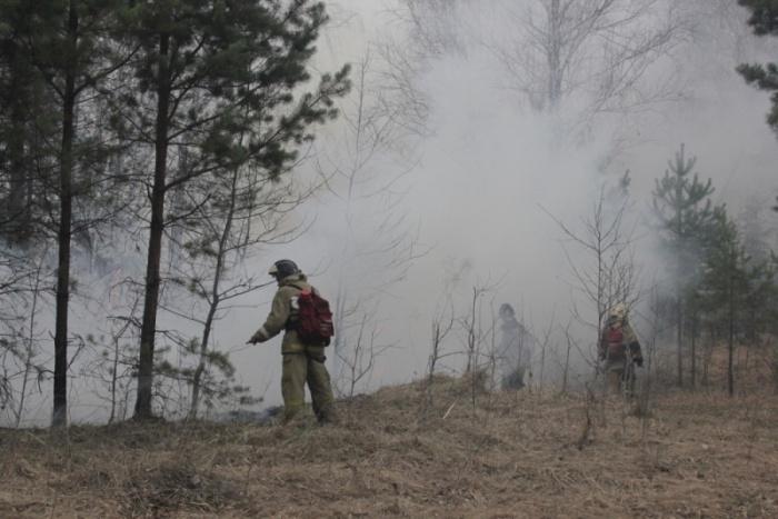 В области действует особый противопожарный режим