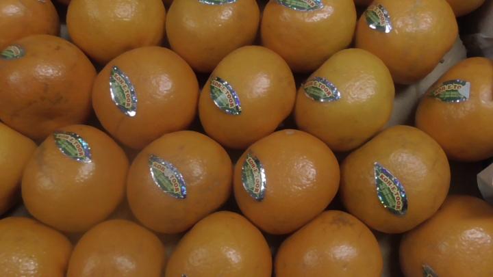 На складе в Кургане нашли тонну мандаринов без документов