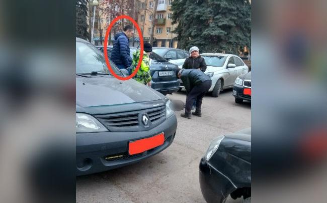 На дороге Уфы водитель насмерть сбил собаку