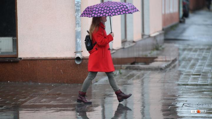Запасайтесь какао и пледами: в выходные в Екатеринбурге будет дождливо и пасмурно