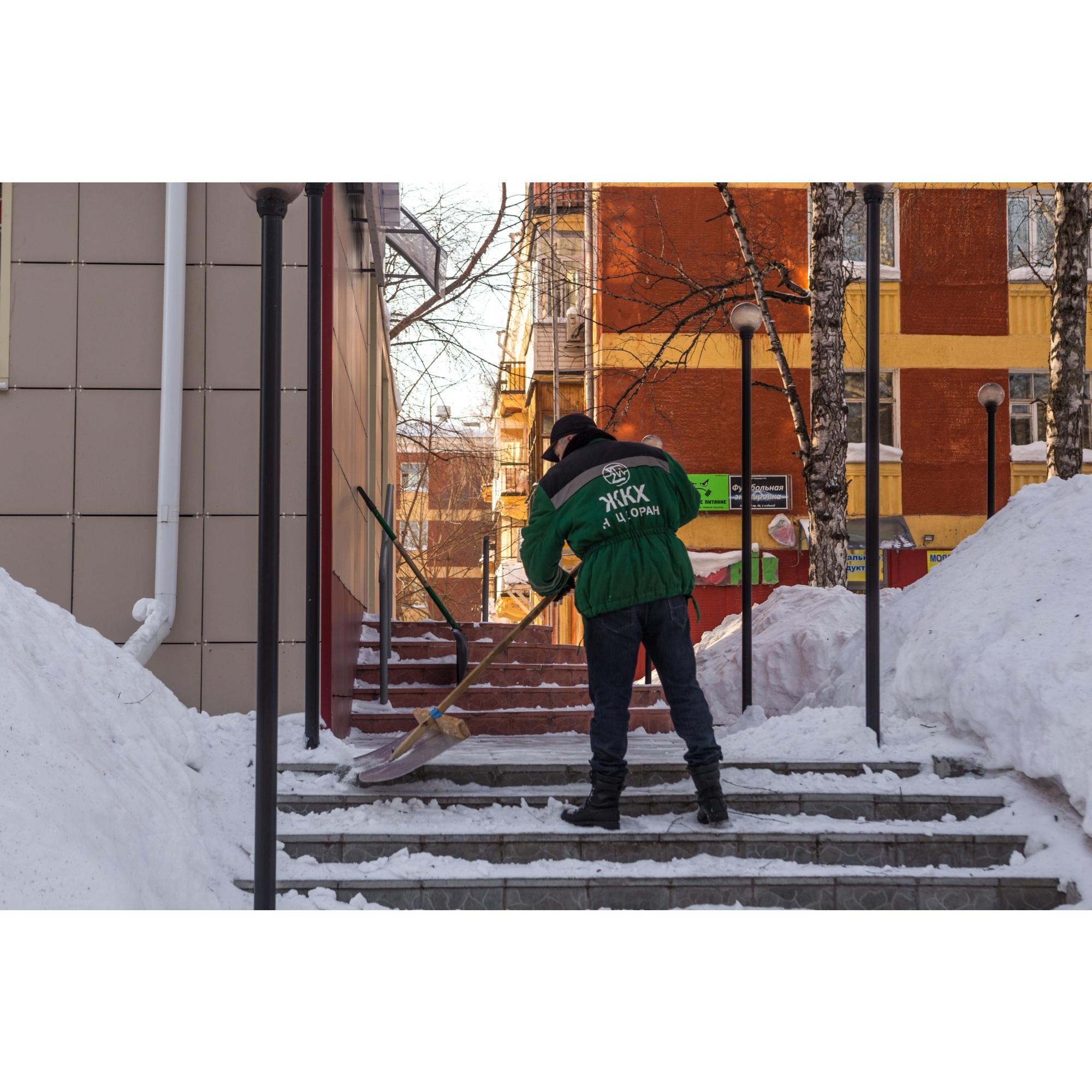 Жители Академгородка рассказали о том, что улицы и дворы усиленно чистят