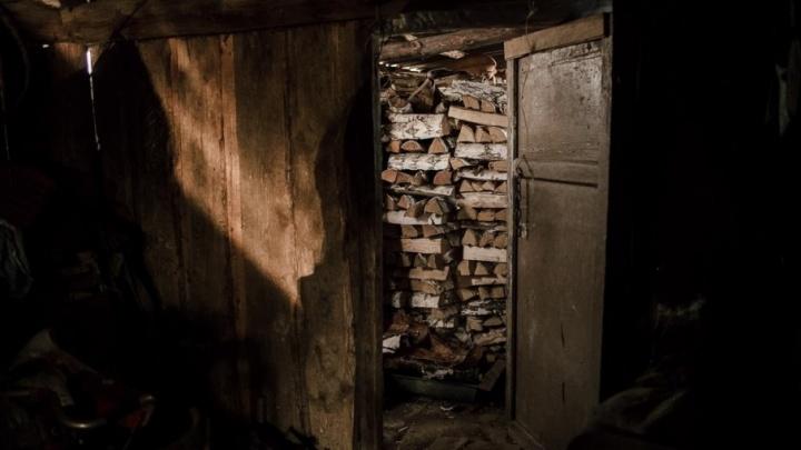 100 тысяч рублей и бензопилу пришлось отдать зауральцу за вырубленный лес