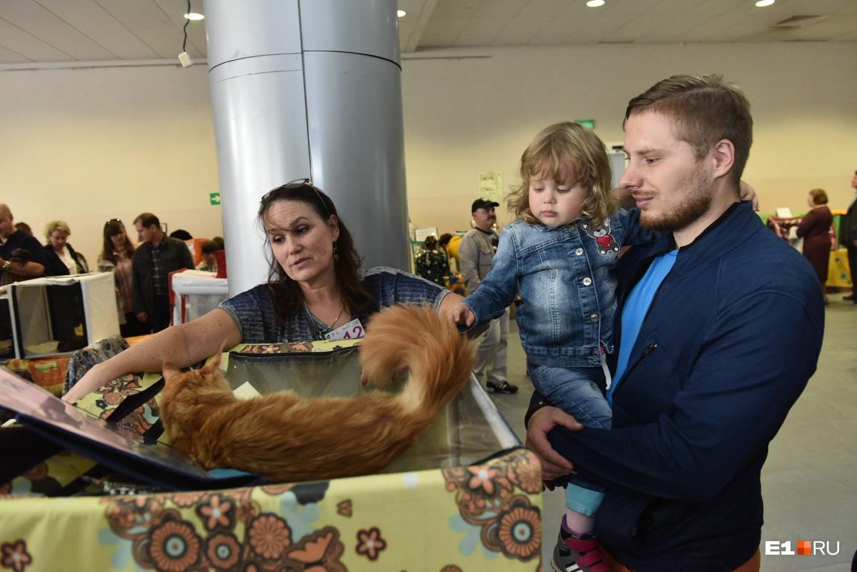 Выставка очень нравится детям