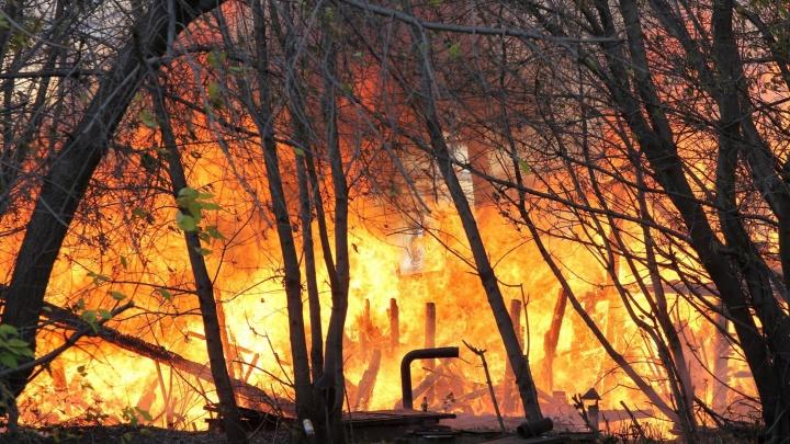Экстренное предупреждение: под Новосибирском возможны крупные пожары