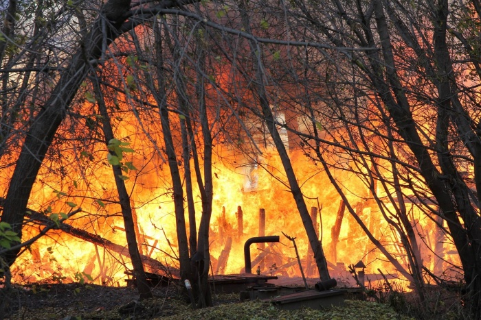 Спасатели сообщили о высокой пожароопасности в Барабинском, Чистоозёрном и Карасукском районах