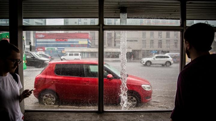 Выходные под дождём: к Новосибирску приближается тёплый фронт
