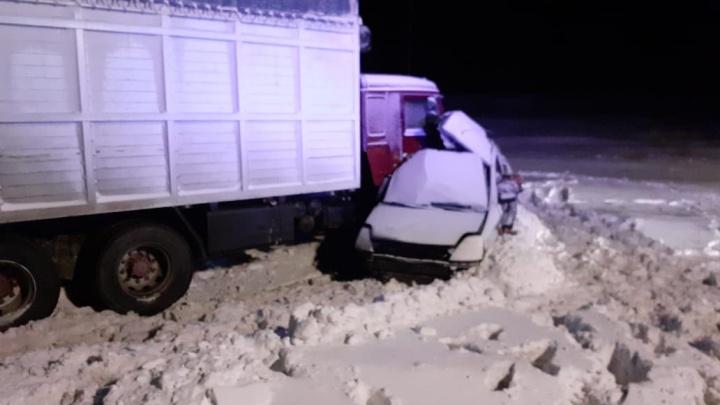 Обе машины, попавшие в ДТП с пятью погибшими в Челябинской области, были с иностранными номерами