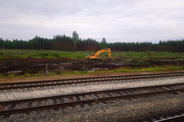 По словам местных жителей, территорию расчистили, чтобы проложить железную дорогу, по которой к новому предприятию будут подвозить отходы из Москвы<br><br>