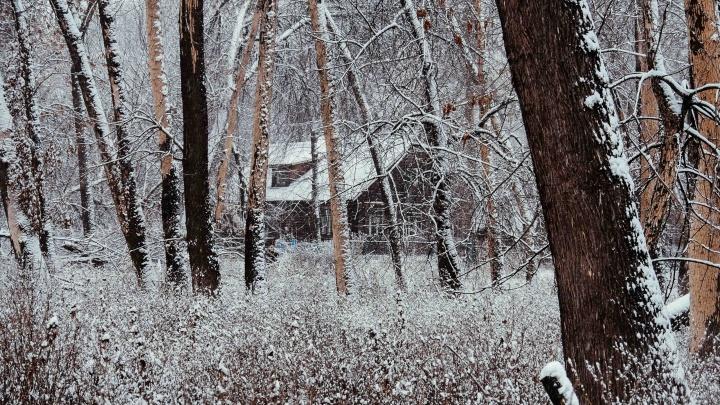 Волгоградцам показали красоты зимнего острова Сарпинский