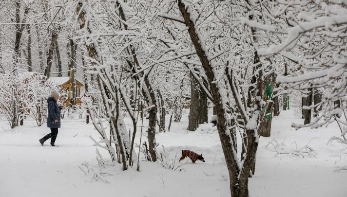 В Красноярске ожидаются очень теплые выходные: в воскресенье почти весна