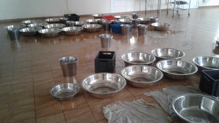 40 тазов и вёдер: в Ярковском доме-интернате для престарелых и инвалидов начал протекать потолок