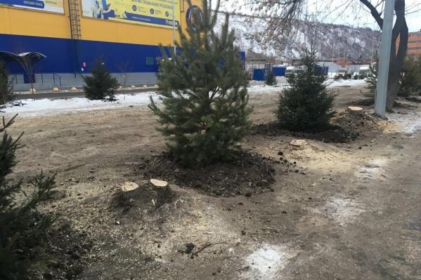 Новый сквер на Свердловской после благоустройства