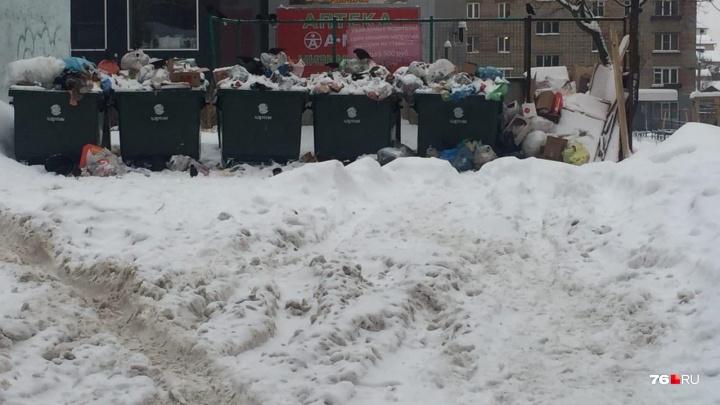 Коммунальщики страдают из-за коммунальщиков: в Ярославской области перестали вывозить мусор