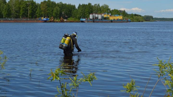 «С ними плавать веселее»: ярославские дайверы собрались заселить карьер за городом живыми раками