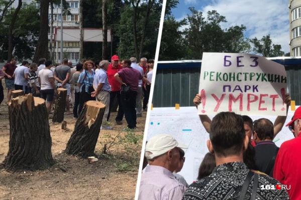 Активисты пытаются бороться с вырубкой деревьев на встречах с чиновниками