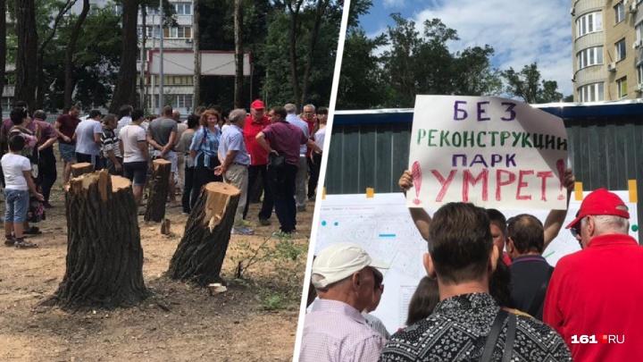Ростовские активисты добились приостановки вырубки деревьев в парке «Осенний»