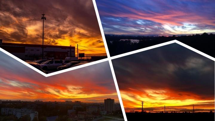 Краски, разлитые в небесах. Любуемся 15 снимками потрясающего тюменского заката