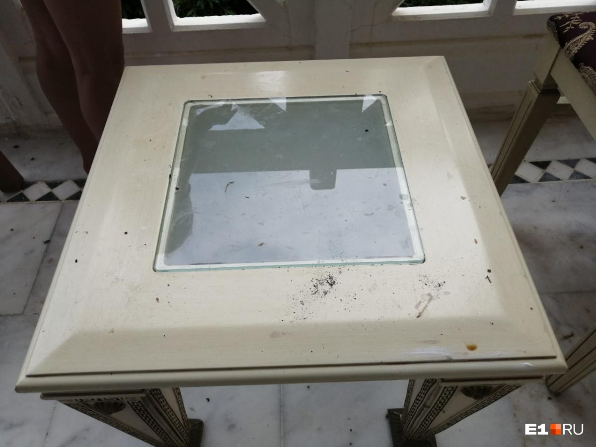 Фото номера, в который туроператор поселил Анну с дочкой: «В столовой грязная побитая посуда. Еда такого вида, что страшно прикоснуться. Номер не вымыт, без полотенец. Моча на унитазе, кровь на шторке и умывальнике»