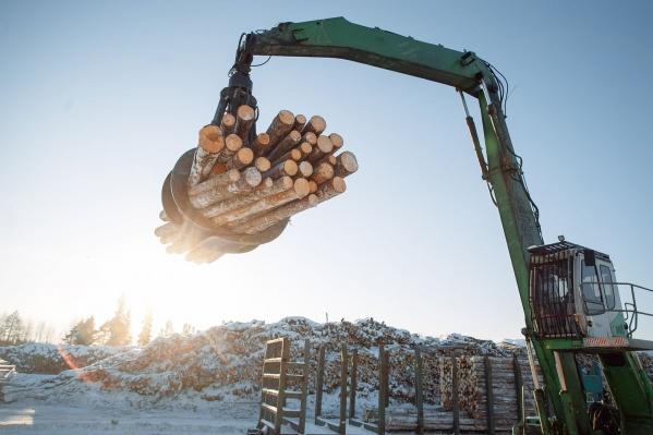 Лесопромышленники области обсудили успешные кейсы зарубежных и региональных компаний