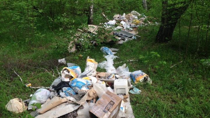 В Бугринской роще за день появилась свалка строительного мусора
