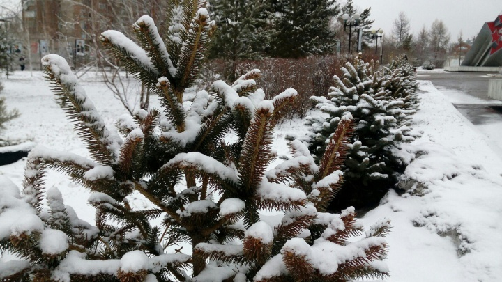 «Весна психанула»: разглядываем Омск, который завалило снегом в середине апреля