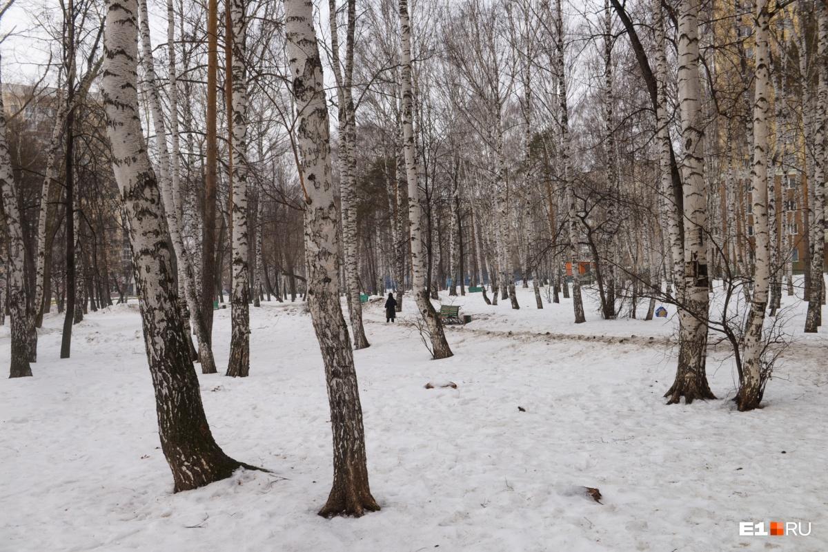 Сейчас это обычный парк, а раньше было кладбище