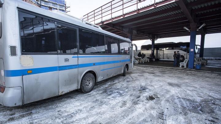 Междугородние рейсы на девяти направлениях отменили из-за морозов