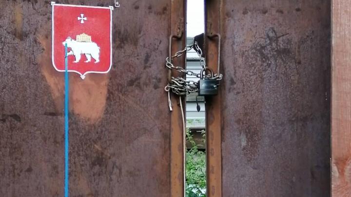Медведь наступил на ухо губернатору: в Питере появился стрит-арт об уходе Курентзиса из Перми