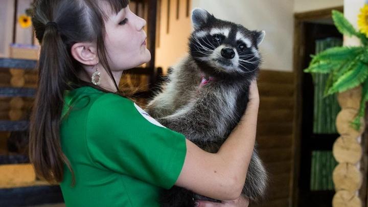 Госдума запретила контактные зоопарки