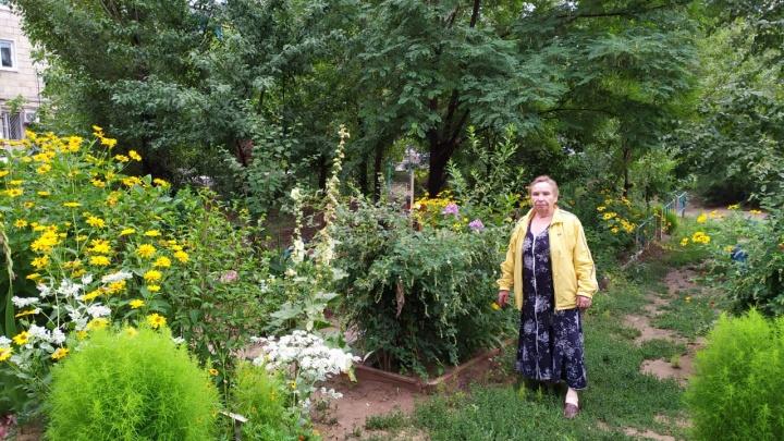 «Якобы я спаивала мужиков ради огорода»: волгоградке грозит штраф за цветущий сад под окнами