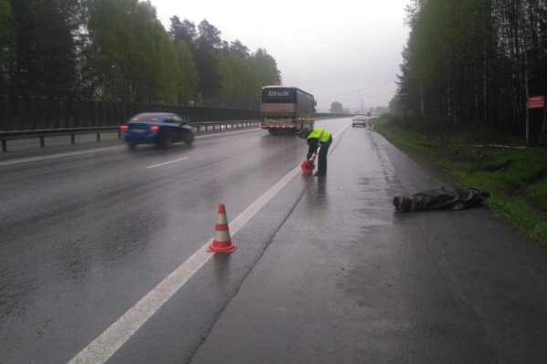По предварительным данным, пешеход шел по обочине, но автомобиль все равно зацепил его