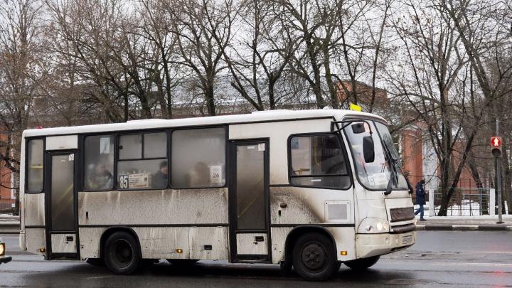 «Хотелось бы, чтобы подвижной состав мылся»: и. о. мэра Ярославля потребовал чистых маршруток