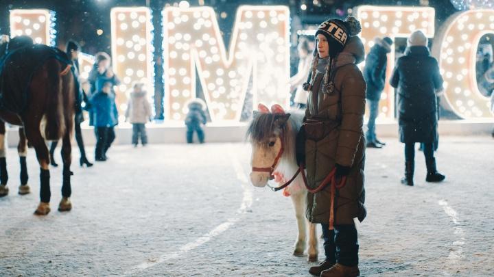 Трах-тибидох! Рассказываем, как тюменцам загадать желания в Новый год, чтобы они точно сбылись