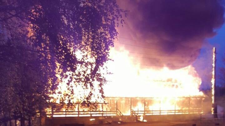 «Детей из окон вытаскивали»: инструкторы вывели 28 детей из горящей базы отдыха
