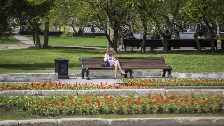 Уже не лето: новосибирцев ждёт слабое потепление в выходные