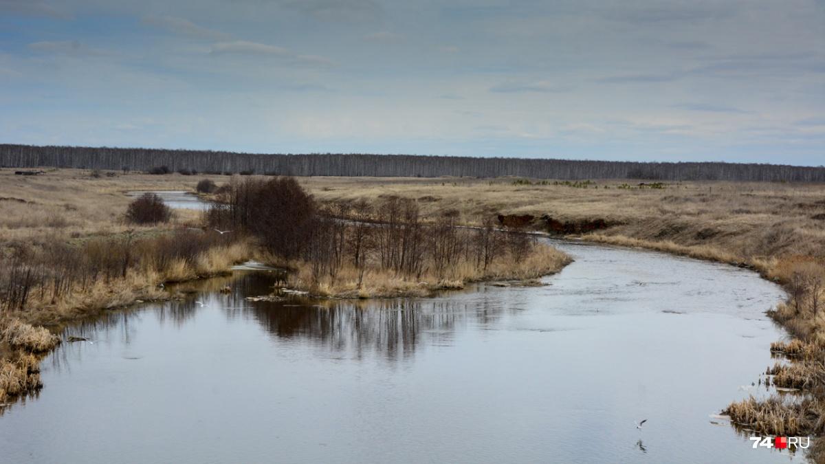 Река здесь разливается, что также маскирует заражение дна