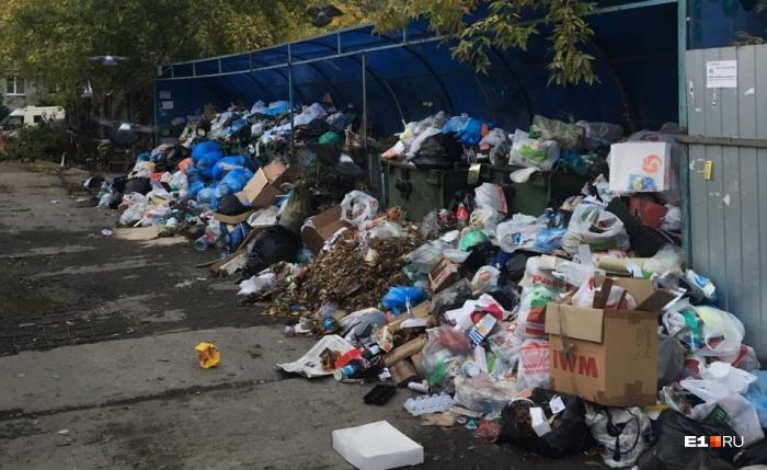 Одна из мусорных свалок