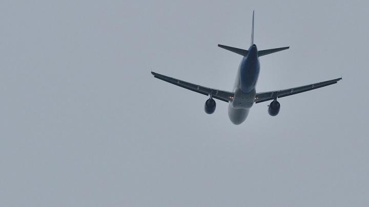 Нетрезвую пассажирку, летевшую из Екатеринбурга, сняли с рейса в новосибирском аэропорту
