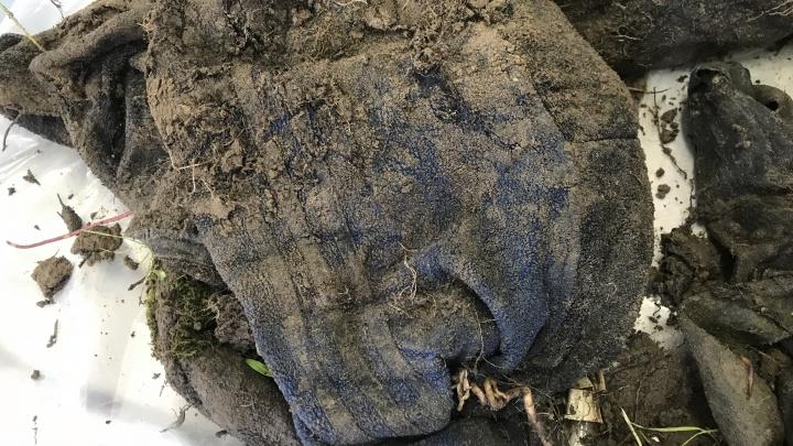 В Самарской области нашли скелет мужчины в спортивном костюме и с часами Montana