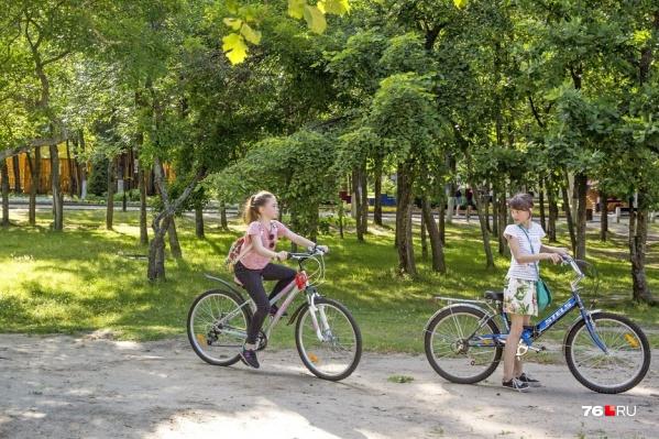 Велодорожки обещают сделать в парке 30-летия Победы