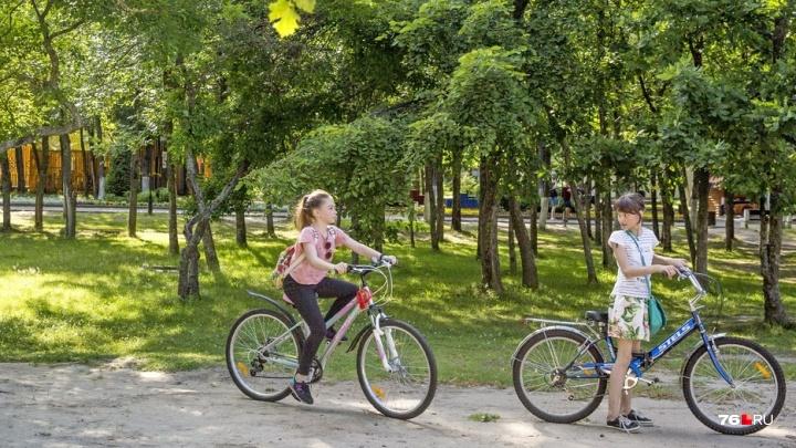 Обещают велодорожки: на ремонт двух парков в Ярославле потратят 52 миллиона рублей