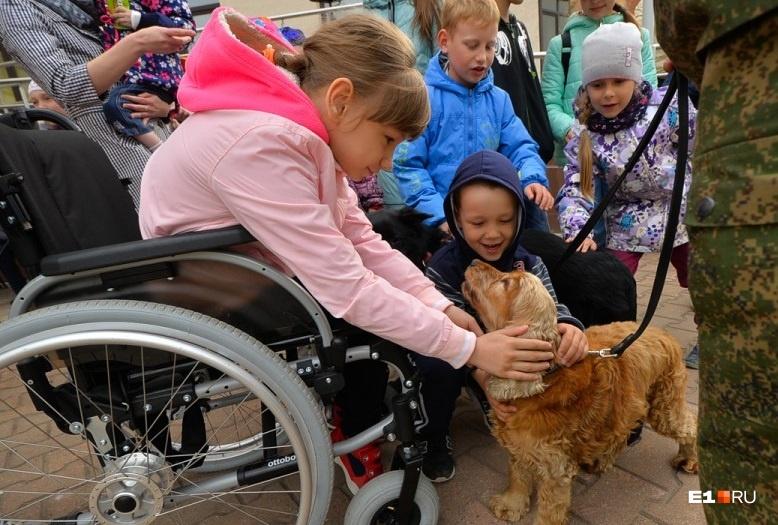 Под окнами больницы пользователи форума E1.RU «Общение любителей животных»  устраивают для маленьких пациентов дог-шоу