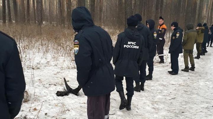 Екатеринбургских студентов научили искать в лесу пропавших людей
