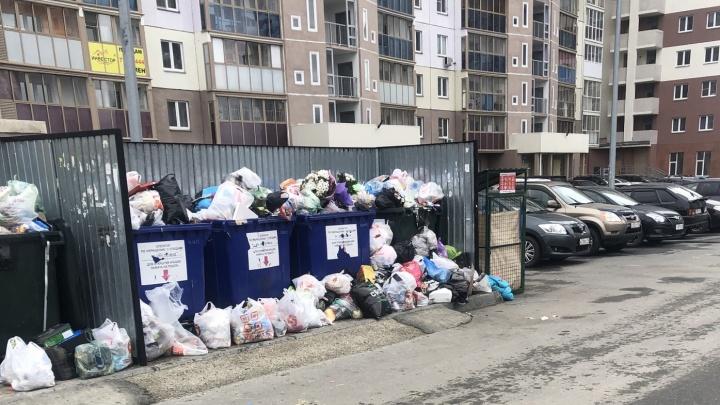 Вывоз мусора по телефону: челябинцы могут сообщить о переполненном баке через мобильное приложение