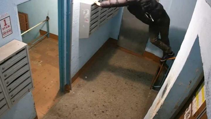 Карабкался по стене: перекопский тарзан украл лампу из-под потолка в подъезде. Видео