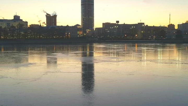 Городской пруд затянуло льдом: смотрим фото