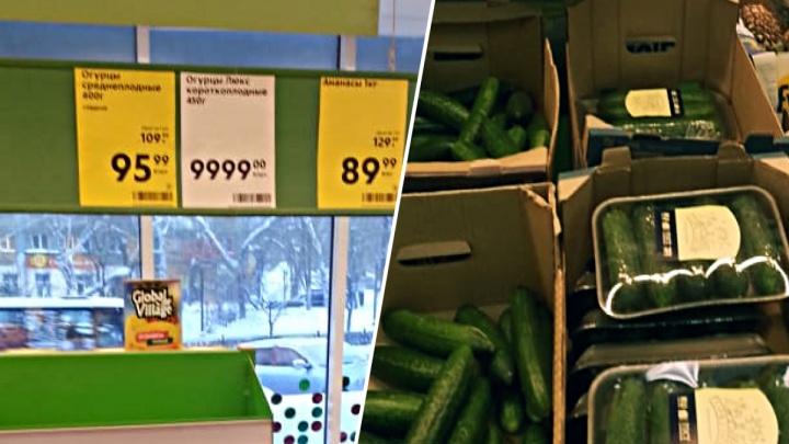 В магазине на Восходе покупатели нашли огурцы «Люкс» по 20 тысяч рублей за килограмм