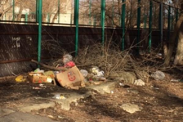 По словам горожан, раньше мусор вокруг спортивной «коробки» убирали школьники и студенты